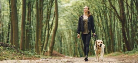 Spacer jako aktywność fizyczna